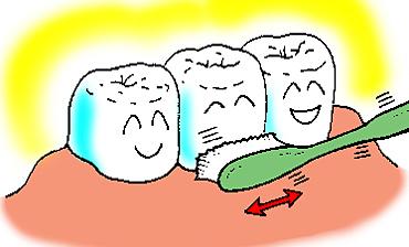 歯ブラシの正しい使い方2