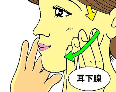 唾液を出すマッサージ1