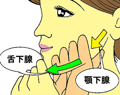 唾液を出すマッサージ耳下腺2